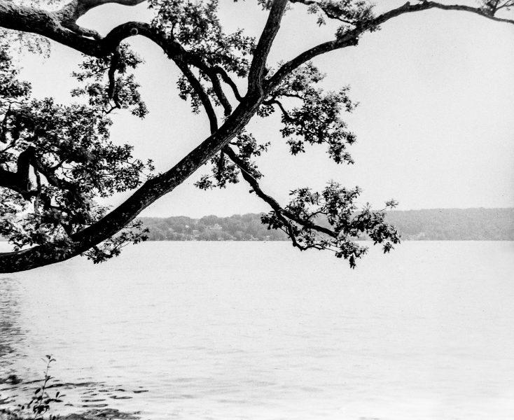Starnberger See bei Feldafing