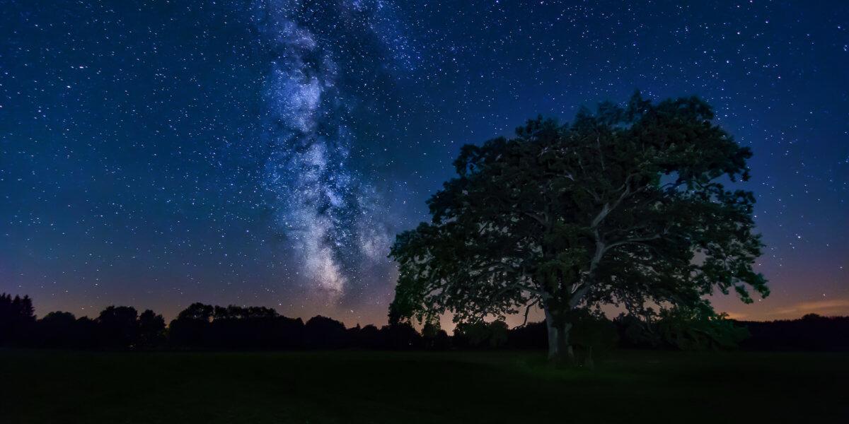 Milchstraße Sommer Baum Tutzing