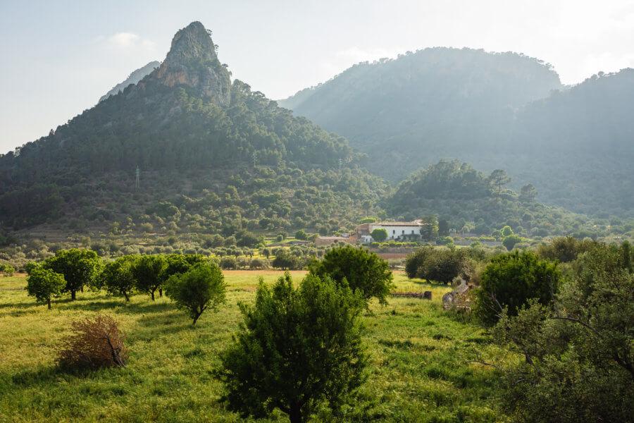 Mallorca Landesinnere